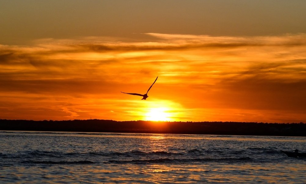 sunset-over-the-sea-1500x609